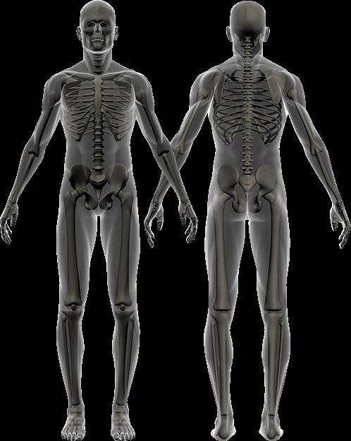 Austin Orthopedic Surgeons   Orthopedist   Texas Orthopedics